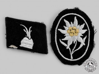 Germany, SS. A Lot of Two SS Insignia