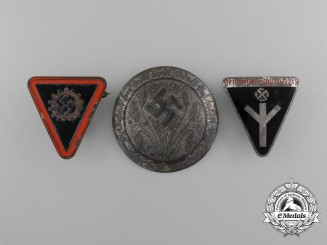 A Lot of Three Third Reich Period Civilian Organization Membership Badges