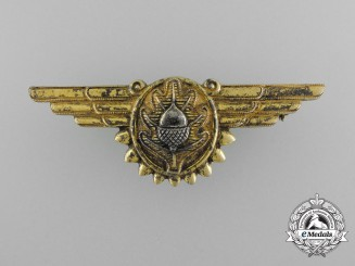 A United States Navy Flight Surgeon Wings by Vanguard N.Y.