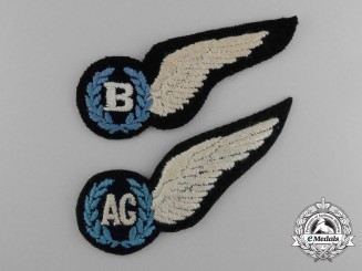 Two Royal Australian Air Force (RAAF) Wings