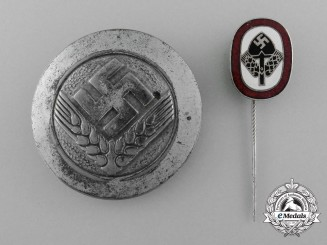 Two German Labour Service Badges