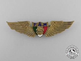 A Mexican Pilot's Badge