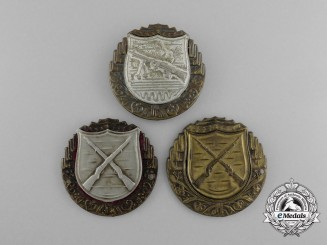 Three Czechoslovakian Army Proficiency Badges