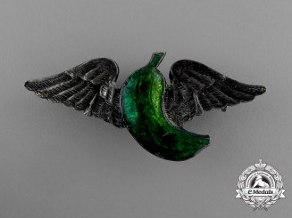 A Rare USAAF Green Banana Wing