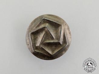 An Unknown Third Reich Period Runic Badge