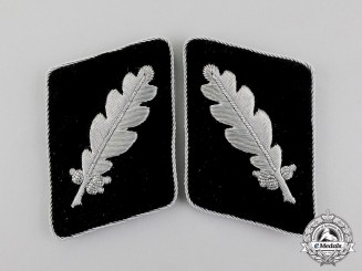 A Mint SS Pair of Collar Tabs for an SS-Standartenführer