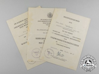 An Eastern Front Award Document Group to the Medical Company 360