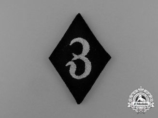 A Scarce Waffen-SS Dental Services Sleeve Diamond