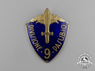 "An Italian 9th Infantry Division ""Pasubio"" (9ª Divisione di Fanteria ""Pasubio"") Sleeve Shield"