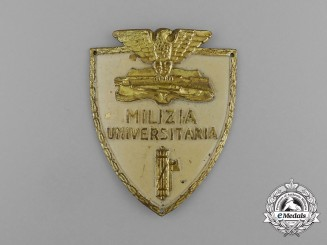 An Italian University Militia Fascist Membership Badge