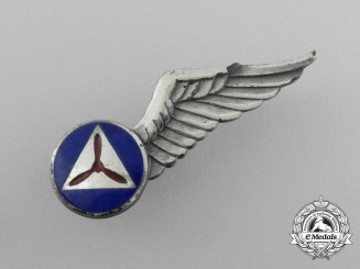 An American Civil Air Patrol Observer Wing