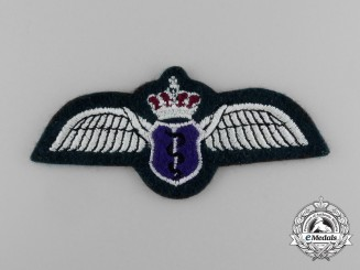A Royal Jordanian Air Force Medical Flight Personnel Badge