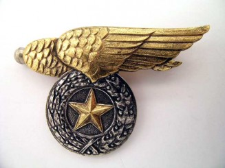 PILOT'S BADGE – VIETNAM ERA