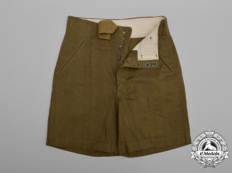 A Pair of Mint Army (Heer) Tropical Shorts