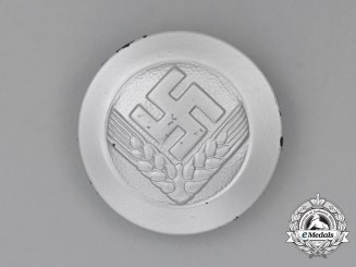 A Third Reich Period RADwJ (Labour Service of the Reich for the Female Youth) Membership Brooch