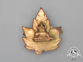 An Early Toronto Constabulary Officer's Cap Badge