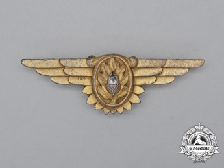 A Second War United States Navy (USN) Flight Surgeon Badge