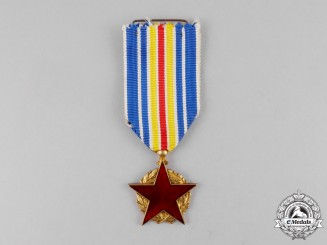 France. A Medal for the War Wounded, Combatant's Issue
