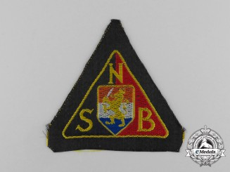 Germany. A Mint National Socialist Movement in the Netherlands Black Shirts Sleeve Patch