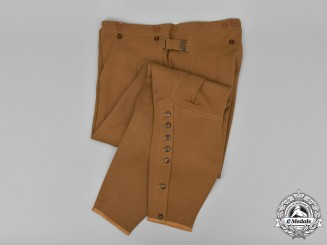 Germany, NSDAP. A Pair of Political Leader Breeches