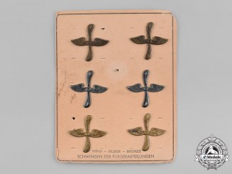 Germany, Empire. A Set of WW1 Period Wings, on Salesman's Board