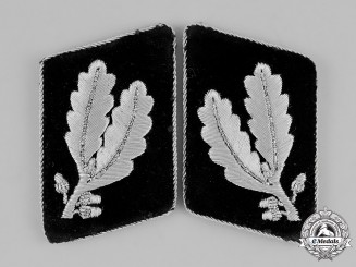 Germany, SS. A Pair of Collar Tabs for an SS-Oberführer