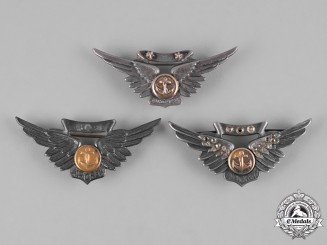 United States. A Lot of United States Navy Combat Air Crew Badge