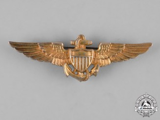 United States. A United States Navy and Marines Aviator Badge by Amico