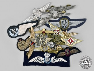 International. A Lot of Nineteen Air Force, Army, Navy Badges for Aircrews, Paratroopers, Rescue Units
