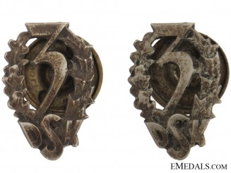 Pair of Collar Badges