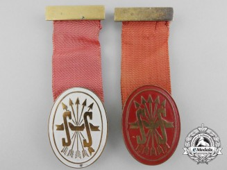 Two Social Services of the Spanish Falange Badges