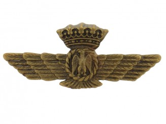 Fascist Pilot Wings