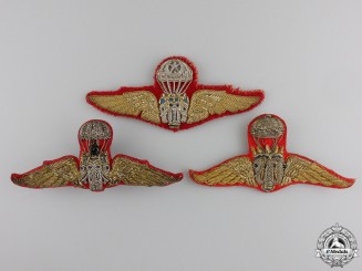 Three Thai Paratrooper Jump Badges