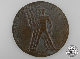 A Stahlhelm Wehrsport Medal