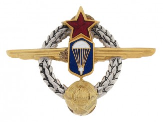 Para Instructor's Badge