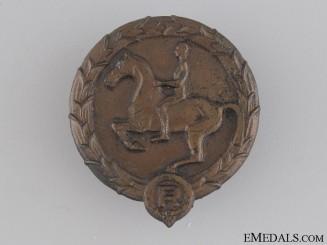 Young Horseman's Badge