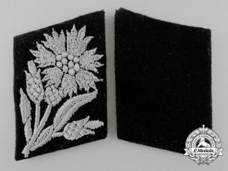 A Set of Waffen-SS Tabs for 22 SS Freiwilligen Kavallerie