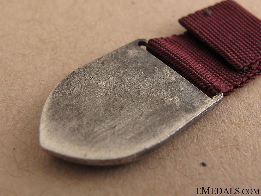 A Dutch Nazi RAD Medal