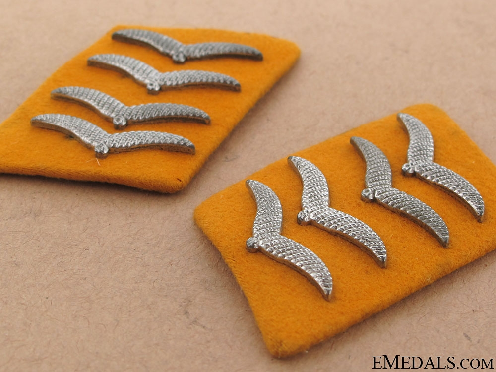 Flight Oberst Collar Tabs & Shoulder Boards