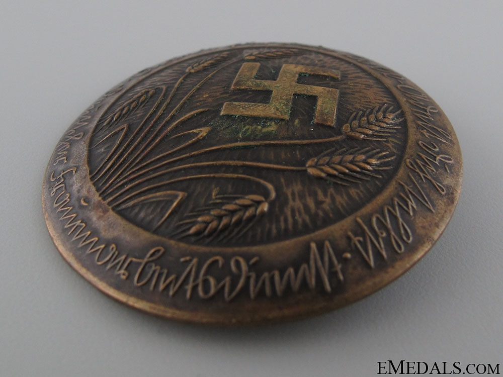 RADwJ Members Badge - Bronze Grade