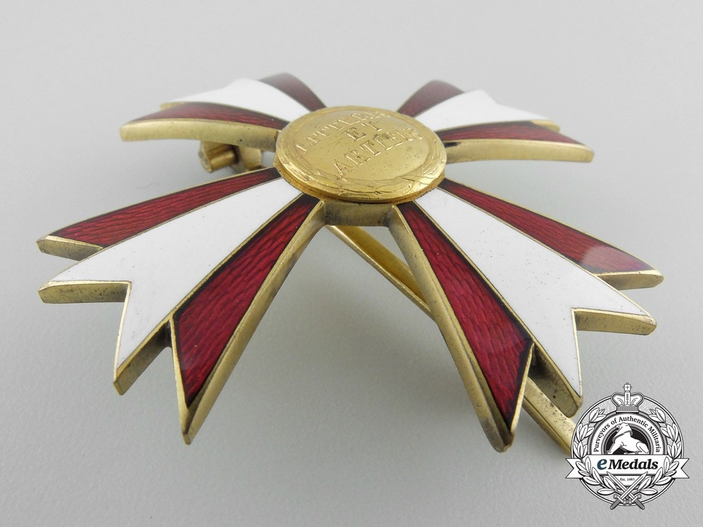 An Austrian Decoration for Arts & Letters; Breast Star with Case