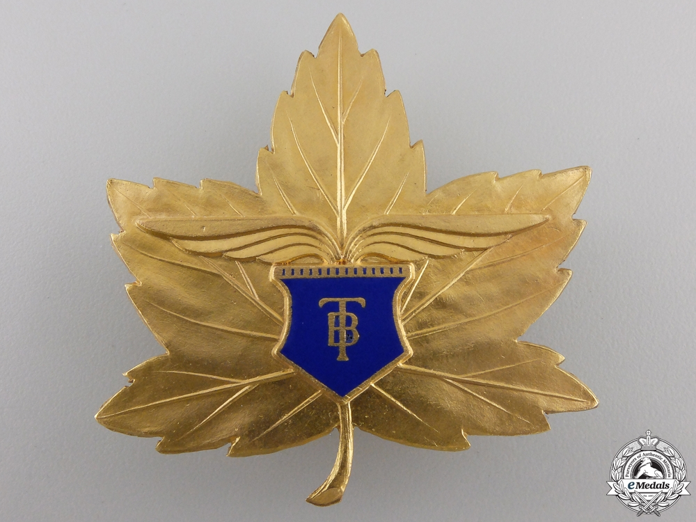 A 1943 Canadian Elementary Flying School Badge
