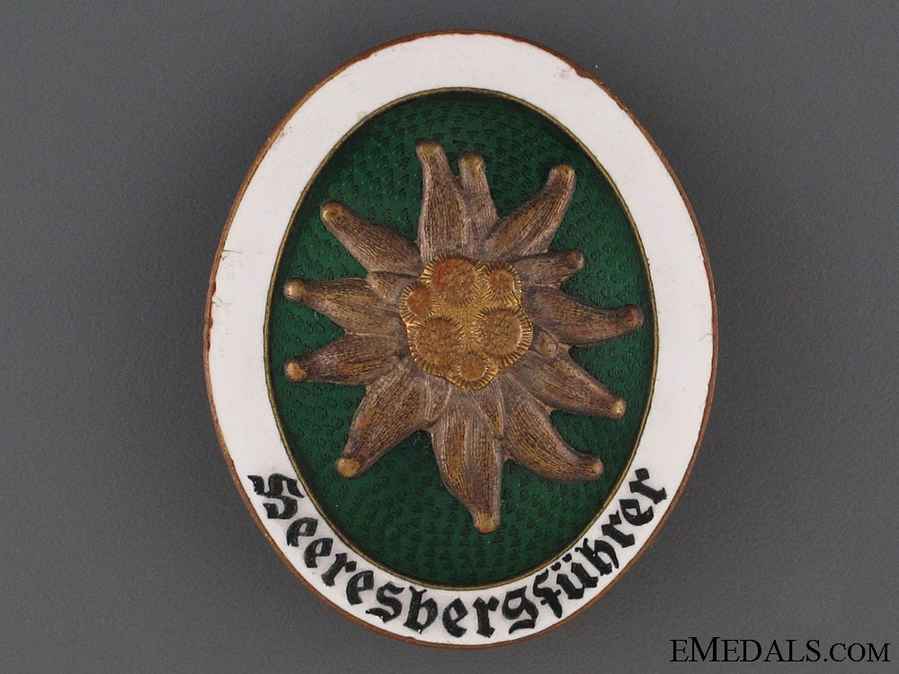 A Rare Alpine Leaders Badge