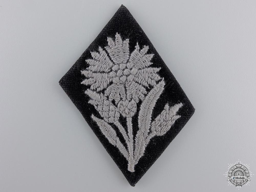 A Waffen-SS Tab for 22 SS Freiwilligen Kavallerie