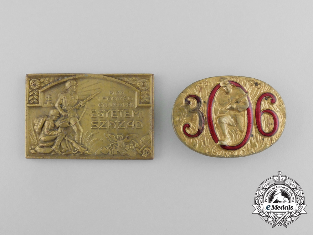 Two Hungarian First War Period Badges