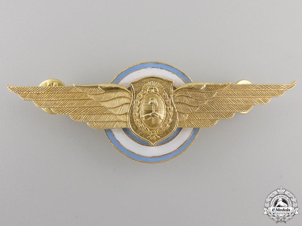 An Argentinian Pilot Wing