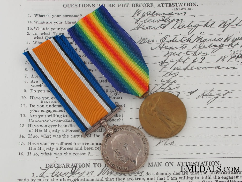 A First War Pair to a Newfoundlander