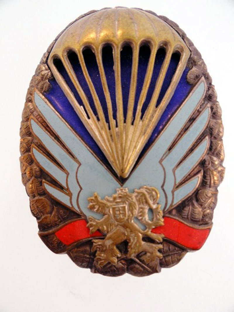 Paratroop Badge