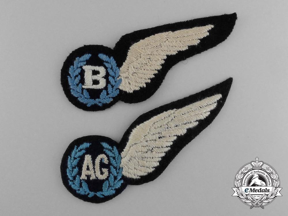 Two Royal Australian Air Force (RAAF) Wings