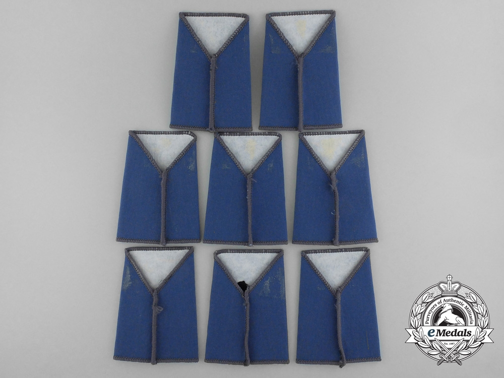 Eight Royal Air Force (RAF) Tactical Communications Wing Slip-On Shoulder Titles